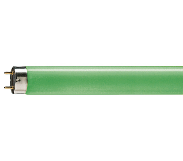 Picture of Tub fluorescent T8 Philips Master TL-D 18W Green 18W G13 lumina verde 1800LM