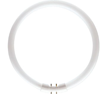 Picture of Tub fluorescent C-T5 Philips TL5 circular 22W 2GX13 lumina neutra 1800LM
