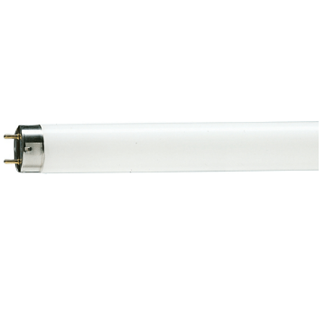 Picture of Tub fluorescent T8 Philips Master TL-D tubular, 15W, G13, lumina neutra, 1000LM